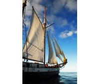 Barco SV Sea Pearl