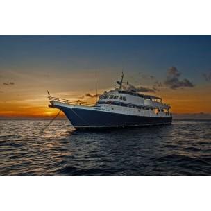 Caribbean Explorer II