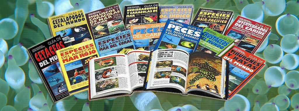 Inicia o completa tu formación sobre vida marina con nuestra amplia colección de guías de especies.